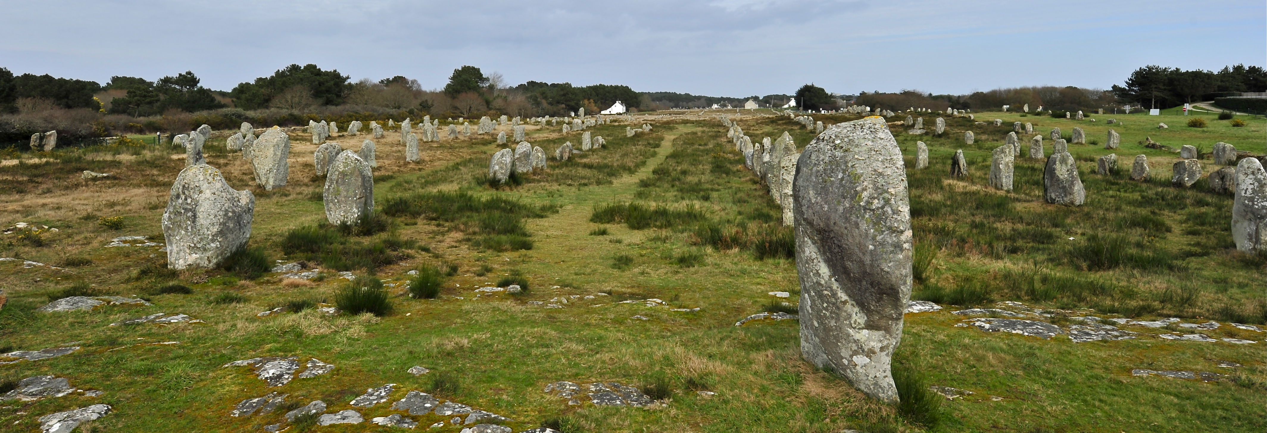 alignements-carnac